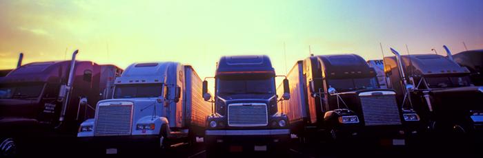 Five trucks parked together