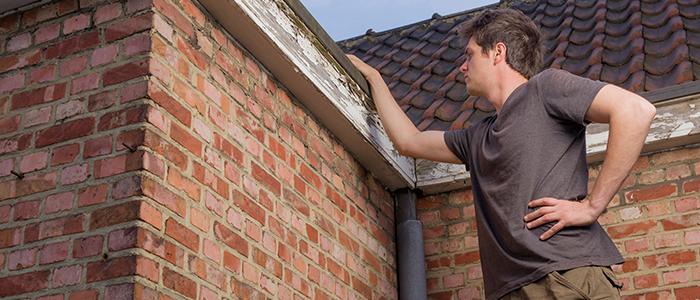 Un homme inspecte son toit pour les dommages