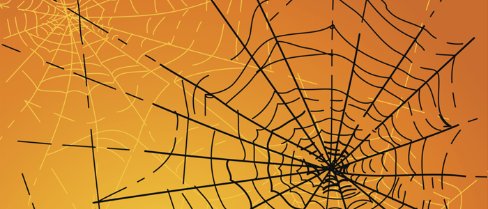 Black spider web in front of orange background