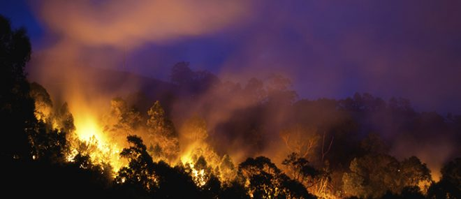 wildfire at night.