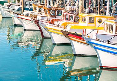 Boats docked in a marina.