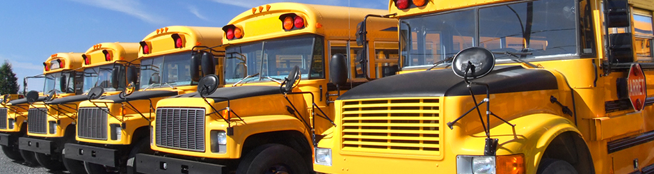 A row of parked yellow school buses.