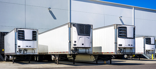 A row of four white refrigerated trailers parked outside a warehouse.